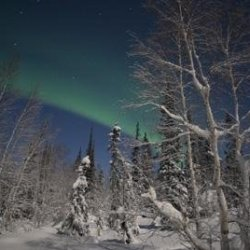 Green Aurora At Prelude Lake Wall Decal - 42 Inches W X 28 Inches H - Peel And Stick Removable Graphic