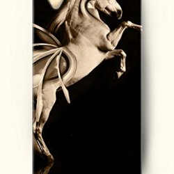 Oofit Phone Case Design With Wild Horse For Apple Iphone 4 4S 4G