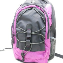 Swissgear Mars 16-Inch Pink Computer Laptop Backpack