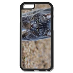 Exotic Clear Cat Iphone 6 4.7 Shell