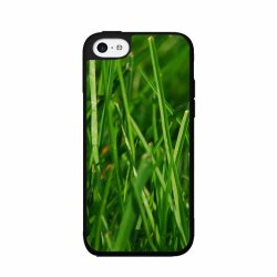 Green Grass - Phone Case Back Cover (Iphone 5/5S - 2-Piece Dual Layer)