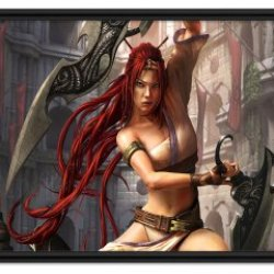 """Heavenly Sword Game Fabric Wall Scroll Poster (32"""" X 20"""") Inches"""