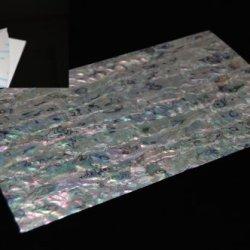 White Paua Shell Adhesive Veneer Sheet