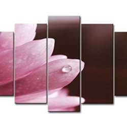 Pink 5 Panel Wall Art Painting Earth Flower Pictures Prints On Canvas Flower The Picture Decor Oil For Home Modern Decoration Print