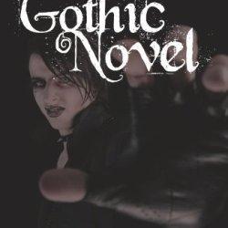 A Novel Gothic Novel
