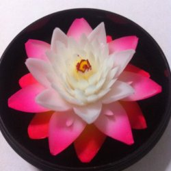 """Soap House® Thai Hand-Carved Soap Flower, 4"""" Scented Soap Carving, Pink Lotus In Decorative Pine Wood Case"""