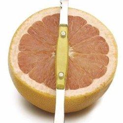 Endurance Stainless Acrylic Grapefruit Double Knife