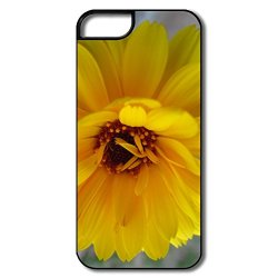 Flower Plastic Nice Cover For Iphone 5/5S