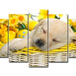 5 Panel Wall Art Painting Springtime Snooze Dog In Basket Prints On Canvas The Picture Animal Pictures Oil For Home Modern Decoration Print Decor