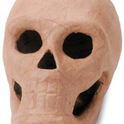 Paper Mache 3-D Skull - Ready To Paint Or Decorate