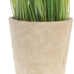 "Artificial Wheat Grass In Circular Pot, 9 1/2"""