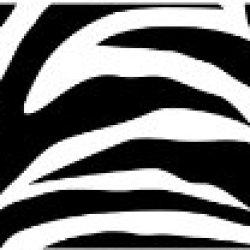 Wall Pops Wps99052 Peel And Stick Go Wild Zebra Decals, 6.5-Inch X 16-Feet Stripe, Black