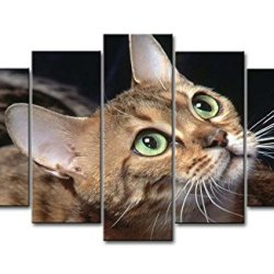5 Panel Wall Art Painting Cute Cats 4 Pictures Prints On Canvas Animal The Picture Decor Oil For Home Modern Decoration Print