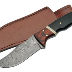 Szco Supplies Horn Handle Damascus Skinning Knife