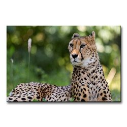 Wall Art Painting Cheetah Lyingin The Grass Pictures Prints On Canvas Animal The Picture Decor Oil For Home Modern Decoration Print For Boys Bedroom