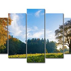 5 Piece Wall Art Painting Morning Light On The Hill Trees Grassland Flower Pictures Prints On Canvas Landscape The Picture Decor Oil For Home Modern Decoration Print For Bedroom