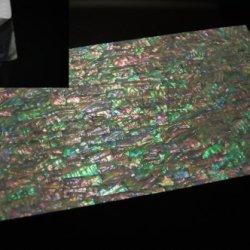 Prism Abalone Enhanced Adhesive Veneer Sheet