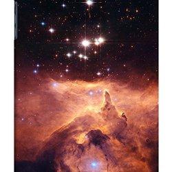 Sangu Roaring Flame Hard Back Shell Case / Cover For Ipad Mini