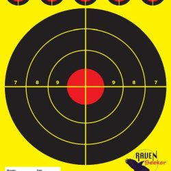 100 Qty High Quality Paper Shooting Targets 8.5X11, 80# Semi-Gloss Stock