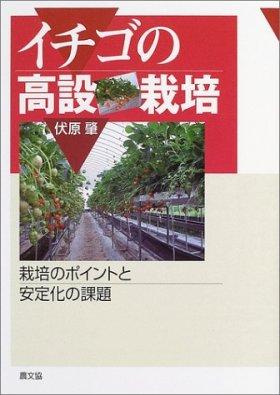 イチゴの高設栽培―栽培のポイントと安定化の課題