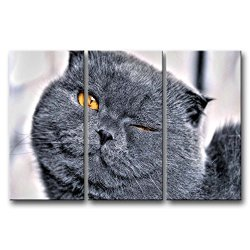 3 Panel Black & White Wall Art Painting Winking Cat With Golden Eyes Pictures Prints On Canvas Animal The Picture Decor Oil For Home Modern Decoration Print For Living Room