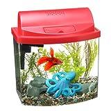 Amazon.com: Big Al's Online   Starter Kits / Aquariums & Fish Bowls