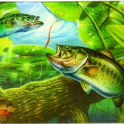 River'S Edge Tempered Glass Cutting Board With An Image Of A Beautiful Bass Swimming In A Clear Pond (Bass Fish, 16-Inchx12-Inchx.5-Inch)