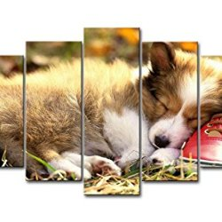 Brown 5 Piece Wall Art Painting Pembroke Welsh Corgi Puppy Sleeping On A Red Shoe Pictures Prints On Canvas Animal The Picture Decor Oil For Home Modern Decoration Print For Decor Gifts