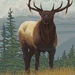 Yellowknife, Canada - Elk Scene (16X24 Giclee Print)