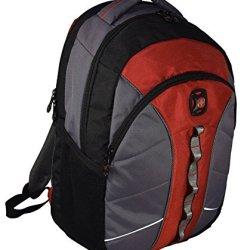 Swissgear The Sun 16-Inch Padded Laptop Backpack/School Travel Bag (Black-Red-Grey)