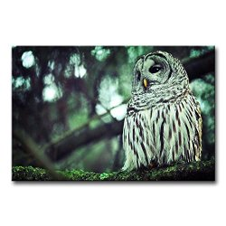 Wall Art Painting Owl With Small Yellow Mouth Prints On Canvas The Picture Animal Pictures Oil For Home Modern Decoration Print Decor For Bathroom