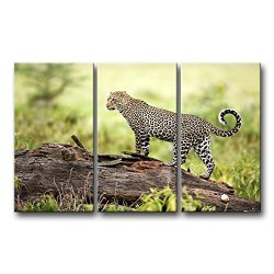 3 Piece Wall Art Painting Leopard Foraging In Forest Wildlife Prints On Canvas The Picture Animal Pictures Oil For Home Modern Decoration Print Decor