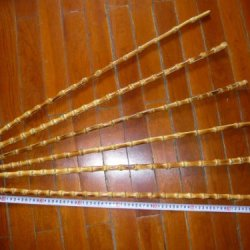 10 Superb Bamboo Sticks 80Cm For Making Horse Whips Or Knife Handle Etc