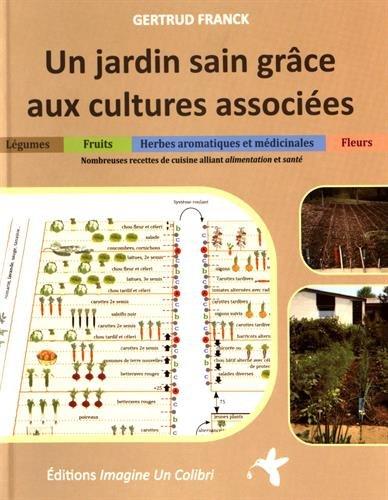 Un jardin sain grâce aux cultures associées : Légumes,