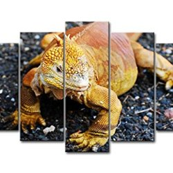 5 Piece Wall Art Painting Golden Galapagos Land Iguana Pictures Prints On Canvas Animal The Picture Decor Oil For Home Modern Decoration Print For Boys Bedroom