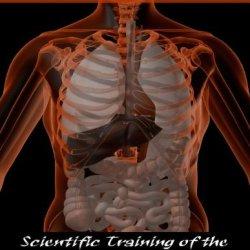 Body Alarm Reaction: Scientific Training Of The Adrenal Stress Response