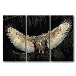 3 Panel Wall Art Painting Wings Owl Pictures Prints On Canvas Animal The Picture Decor Oil For Home Modern Decoration Print For Kids Room