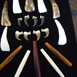 Jewelry Making Craft Supplies - Wolf And Bobcat Claw, Buffalo Teeth, Mixed Buffalo Bone Pipe Beads - Odditie - Mountain Man