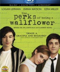 The Perks of Being a Wallflower (Blu-ray + Digital Copy + UltraViolet)