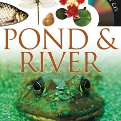 Eyewitness Pond & River (Dk Eyewitness Books)