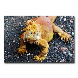 Wall Art Painting Golden Galapagos Land Iguana Pictures Prints On Canvas Animal The Picture Decor Oil For Home Modern Decoration Print For Boys Bedroom