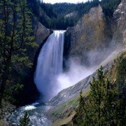Yellowstone - America'S Great Wildlife Park