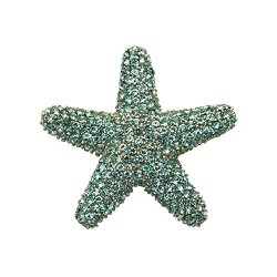 Sterling Silver Starfish Pin With Aqua Crystal Stones