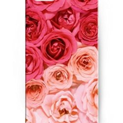 Iphone 6 Case (4.7Inch), Ukase Hard Back Cover Skin Cases With Cool Painting Of Red And Pink Roses