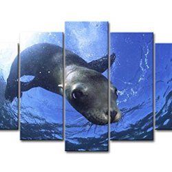 Blue 5 Piece Wall Art Painting Sea Lion Swimming In Sea Prints On Canvas The Picture Animal Pictures Oil For Home Modern Decoration Print Decor For Bedroom