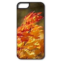 Art Full Protection Fall Colors Iphone 5 Case