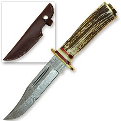 Lone Star Rider Damascus Steel Forged Hunting Stag Handle Bowie Knife