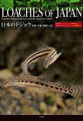 日本のドジョウ 形態・生態・図鑑と文化 日本に分布する全33種・亜種を網羅した初めての図鑑!  LOACHES OF JAPAN