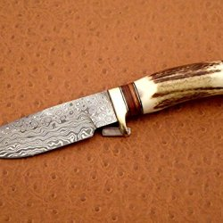 Custom Handmade Damascus Steel Hunting Knife, Handle Stag Horn