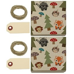 Woodland Animals Kraft Gift Boxes Set Of 2